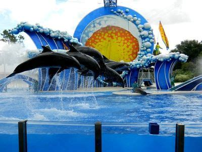 Florida Top 20 Attractions | Best Places to Visit in