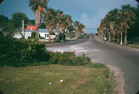 Clearwater, FL – 1947 | Lantana, roses and an old