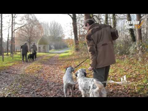 chasse a courre dgo - YouTube